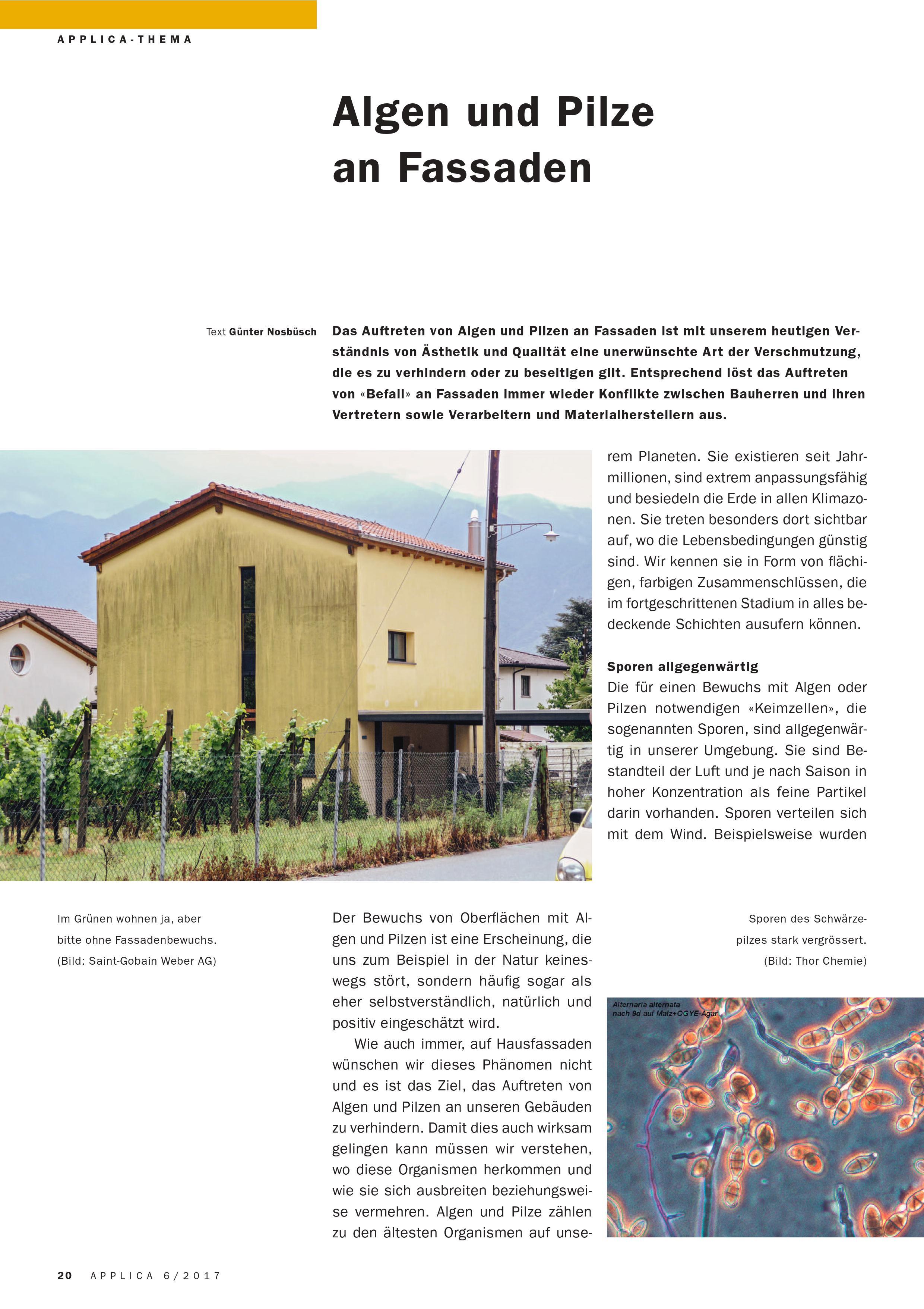 algen und pilze an fassade fassaden blog. Black Bedroom Furniture Sets. Home Design Ideas